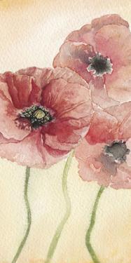 Poppy Composition I by Natasha Chabot