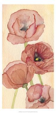 Poppy Composition II by Natasha Chabot