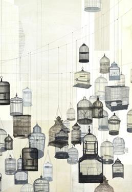 Birdcages 2 by Natasha Marie