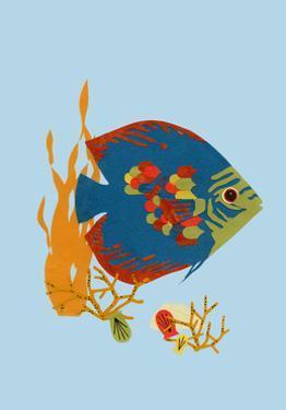 Fish by Natasha Marie
