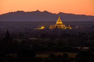 Dhammayazika Buddhist Temple, Bagan (Pagan), Myanmar (Burma), Asia by Nathalie Cuvelier
