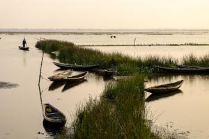 Landscape, Tam Giang Lagoon, Hue, Thua Thien Hue Province, Vietnam, Indochina, Southeast Asia, Asia by Nathalie Cuvelier
