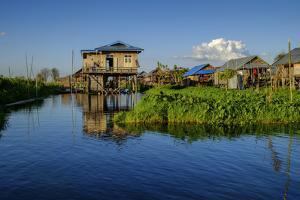 Stilt Houses, Inle Lake, Shan State, Myanmar (Burma), Asia by Nathalie Cuvelier