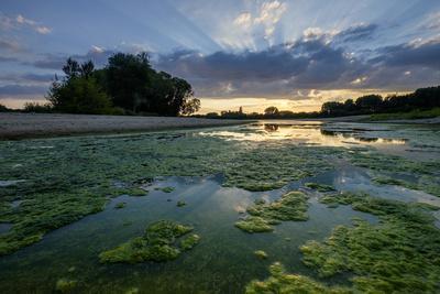 The Loire River Near the Village of La Chapelle Sur Loire, Loire Valley, UNESCO World Heritage Site