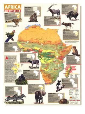 1990 Africa Threatened Map by National Geographic Maps
