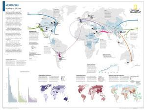2014 Migration - National Geographic Atlas of the World, 10th Edition by National Geographic Maps