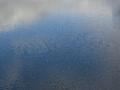 Clouds and Sky Reflected in Rippled Water