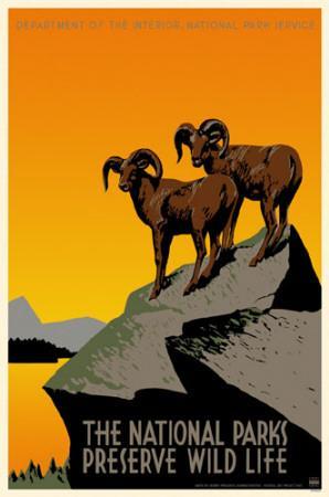 https://imgc.allpostersimages.com/img/posters/national-parks-preserve-wild-life_u-L-F4VB3D0.jpg?p=0