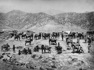 Native Mountain Battery, the Punjab Frontier Force in the Kuram Valley, 1878-80
