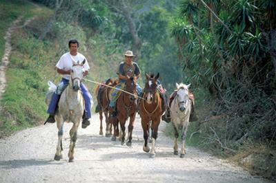 Native people on horses, Costa Rica