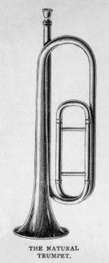 Natural Trumpet on Own