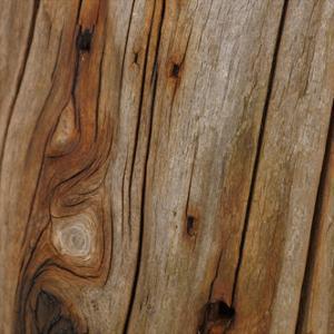 Nature's Textures IX