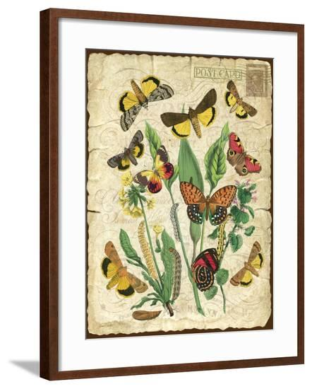 Natures Beauty-NO.1-Jean Plout-Framed Giclee Print