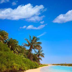 Jandia Sotavento Beach Fuerteventura at Canary Islands of Spain Photomount by Naturewolrd