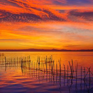 La Albufera Lake Sunset in El Saler of Valencia at Spain by Naturewolrd