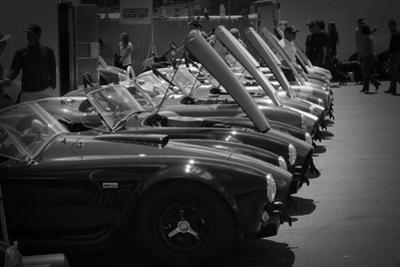 427 Cobras by NaxArt