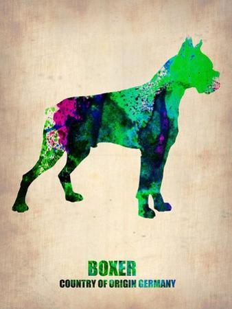 Boxer Poster Poster by NaxArt
