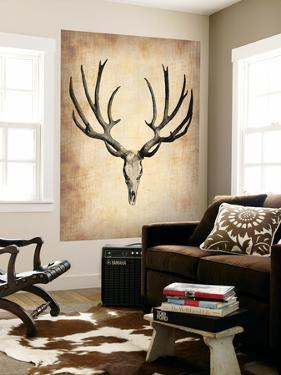 Vintage Deer Scull by NaxArt