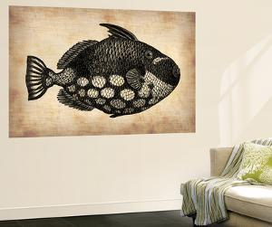 Vintage Fish by NaxArt