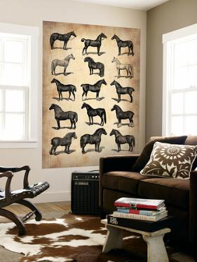 Vintage Horses Collection by NaxArt