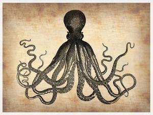 Vintage Octopus by NaxArt