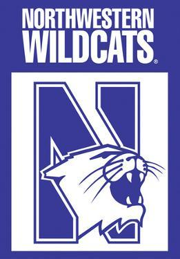 NCAA Northwestern Wildcats 2-Sided House Banner