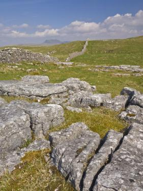 Limestone Pavement and Dry Stone Wall Above Settle, Yorkshire Dales National Park, England by Neale Clark