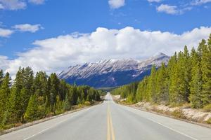 The Icefields Parkway Road Highway Through Jasper National Park by Neale Clark
