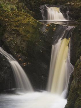 Pecca Falls, Ingleton Waterfalls Walk, Yorkshire Dales National Park, Yorkshire by Neale Clarke