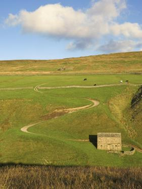 Stone Barn and Winding Track Near Keld, Yorkshire Dales National Park, Yorkshire, England by Neale Clarke
