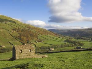 Stone Barns in Swaledale, Near Keld, Yorkshire Dales National Park, Yorkshire, England, UK by Neale Clarke