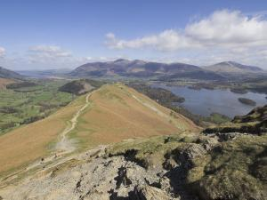 View of Derwent Water from Catbells, Lake District National Park, Cumbria, England by Neale Clarke