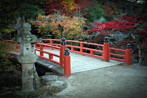 Bridge and Autumn Colours in Miyajima Japan by Neale Cousland