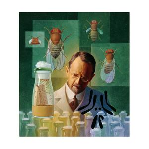 Thomas Hunt Morgan, Geneticist, Studied the Fruit Fly by Ned M. Seidler