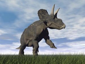 Nedoceratops Dinosaur Grazing in Grassy Field