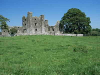 Bective Abbey, Cistercian, Dating from the 12th Century, Trim, County Meath, Leinster, Ireland