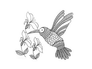 Bird Hummingbird 1 by Neeti Goswami