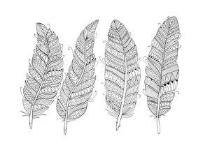 Feathers by Neeti Goswami