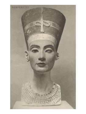 Nefertiti, Head On
