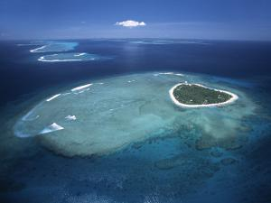 Aerial View of Tropical Island, Tavarua Island, Fiji by Neil Farrin