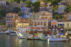 Boats in Symi Harbour, Symi, Dodecanese, Greek Islands, Greece, Europe by Neil Farrin