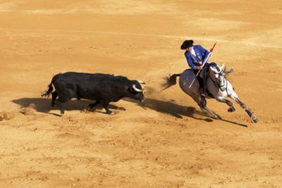 Bullfight, Jerez De La Frontera, Cadiz Province, Andalusia, Spain by Neil Farrin
