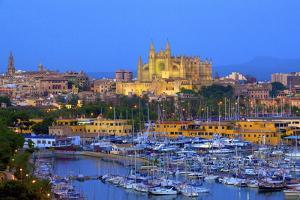 Cathedral and Harbour, Palma, Mallorca, Spain, Europe by Neil Farrin