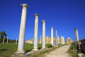 Colonnades of the Gymnasium, Salamis, North Cyprus, Cyprus, Europe by Neil Farrin