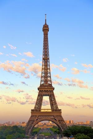 Eiffel Tower, Paris, France, Europe by Neil Farrin