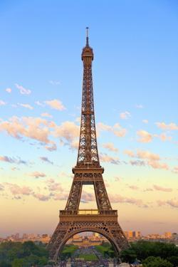 Eiffel Tower, Paris, France, Europe by Neil Farrin