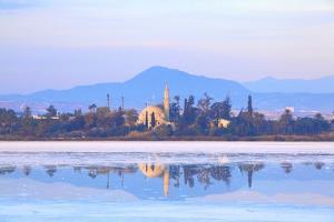 Hala Sultan Tekke, Larnaka, Cyprus, Eastern Mediterranean Sea, Europe by Neil Farrin