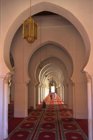 Interior of Koutoubia Mosque, Marrakech, Morocco, North Africa, Africa by Neil Farrin