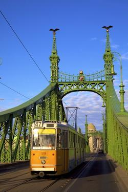 Liberty Bridge and Tram, Budapest, Hungary, Europe by Neil Farrin