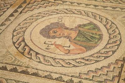 Mosaic, Kourion, Cyprus, Europe by Neil Farrin